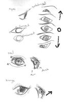 Quick Eyes Tutorial, 1 by EnviousEnvy101