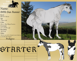 .:SSR Gun Runner HoF-787.5 Points:. by Shining-Spurs-Ranch