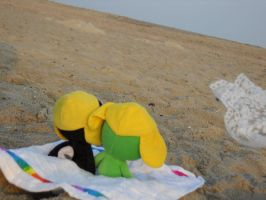 :RealKeroTama: Beach time by bloomacnchez