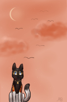 egyptian sunset by Meeshabishy