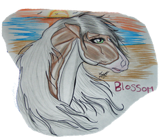 Blossom Traditional by TowaTheStallion45