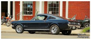 A Sharp Fastback Mustang by TheMan268