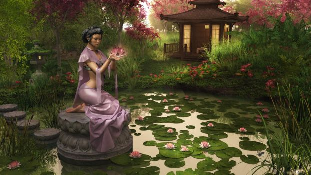 Lotus Early Evening by Cean-Herzfield