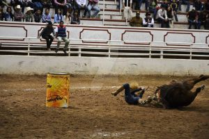 accident in the competition -barrel racing by Horselandiceage