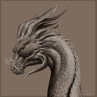 Dragon Print by BH-Stables