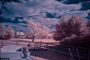 D7000 Infrared 2 by BiOzZ
