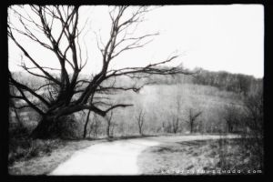 .:way:. by Triodante