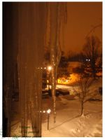 2010 10 02 Snow Pictures 04 by lilly-peacecraft
