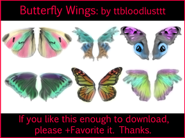Butterfly Wings by ttbloodlusttt