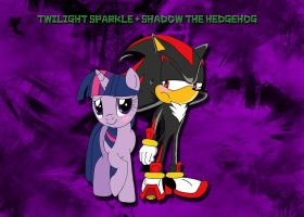 Twilight Sparkle and Shadow the Hedgehog by LightDegel