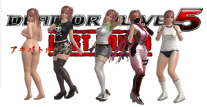 DEAD OR ALIVE 5 LR HONOKA Mod Pack By SSPD077 by faytrobertson