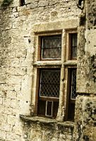 Castle Window by Wollatozzz