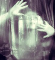 ghost in the machine by latticeworkopines