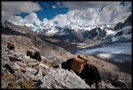 Descent from Karchung La by Dominion-Photography