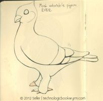 Adorable Pigeon by TechnologicBookwyrm
