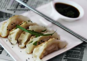 Homemade Pot Stickers by theresahelmer
