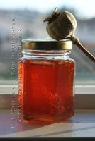 Rose Hip Jelly by 12monthsOFwinter