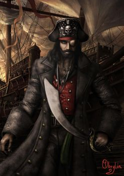 The Pirate Captain by Obrylin