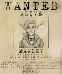 WANTED by Oteibilitz
