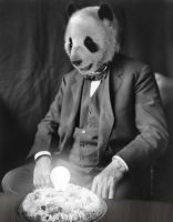 Happy Birthday Edison Panda by MekareMadness