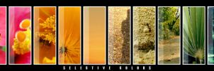 Selective Colors by conceptions