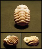fantasy trilobite sculpture by morpho2012