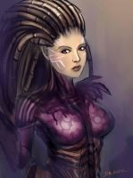 Kerrigan StarCraft 2 by drasor