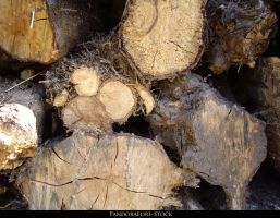 Wood Texture 04 by AnitaJoy-Stock
