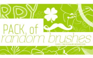 Random Brushes@ by Melondia
