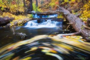 Spinning Autumn by PeterJCoskun