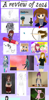 A review of 2014 by Karacolours