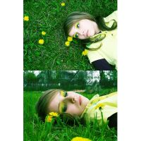 .: dandelions :. by all17