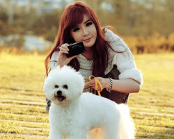 Bom and Poodle 3 by snowflakeVIP