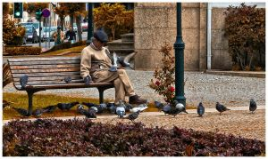 : Man of Doves : by HelderPereira