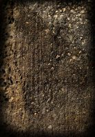 Concrete Texture 9 by HaloAskewEnt