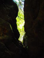 Conkle's Hollow - Looking Up by Lyrak
