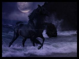 because the night by BSM14