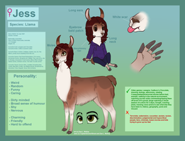 Jess Ref. Sheet .:2015:. - Gift by ScottishRedWolf