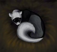 Ferret by Scink