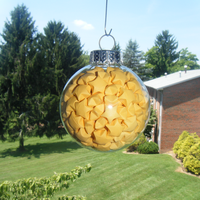 Sunshine Lucky Star Ornament by CelticKnot003