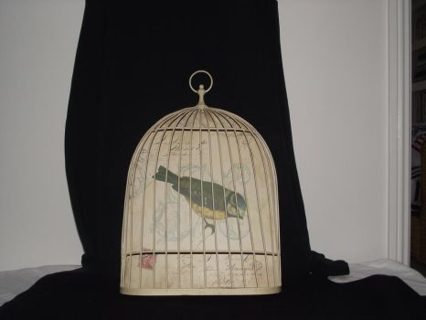 french bird cage stock 2 by erratic-stock