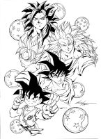 Son Goku stages by marvelmania