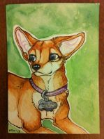 Iron Artist Challenge ACEO 8 by nightspiritwing