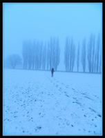Alone in the cold by LadyAcceber