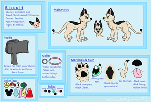 Biscuit Reference Sheet by Biscuit-Rawr