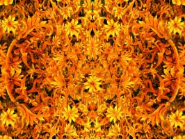 Sunshine Golden Orange Flowers by DonnaMarie113