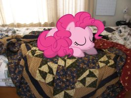 pinkie sleeping on my bed by wolfgangthe3rd