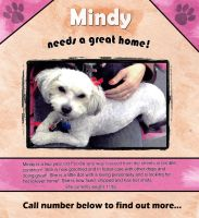 Mindy Poster by Izzie-Hill