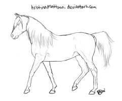 Arabian Lines - Collected Trot by Abiadura