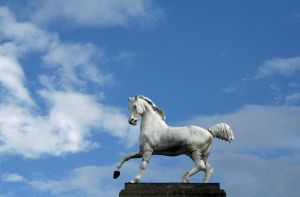 Horse Statue by CD-STOCK by CD-STOCK